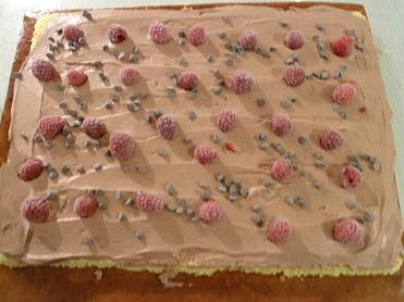Buche roulée chocolat framboises (11)